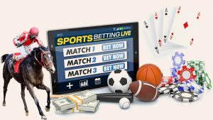 Casino cards and chips, balls from soccer, football, baseball, and a horse